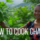 how to cook chaya
